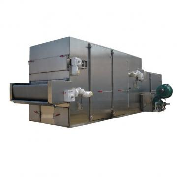 Beef Jerky Mesh Belt Dryer for Foodstuff Industry