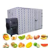 Chinese Suppliers Fruits Vegetable Food Processing Drying Machine