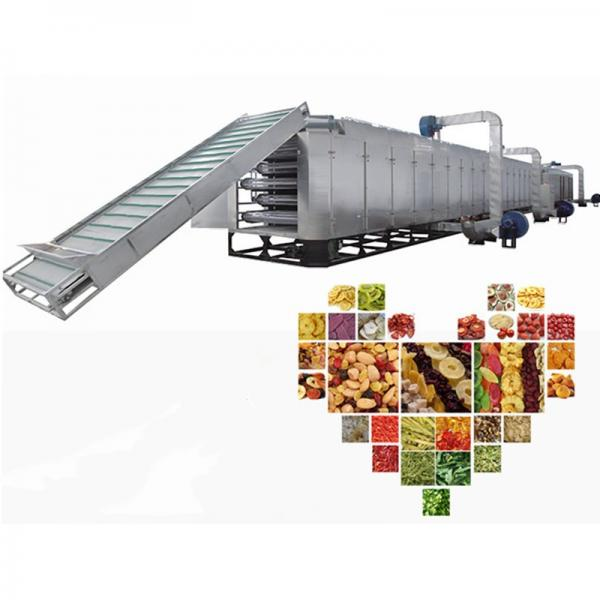 Factory Price Seafood Drying Machine #1 image